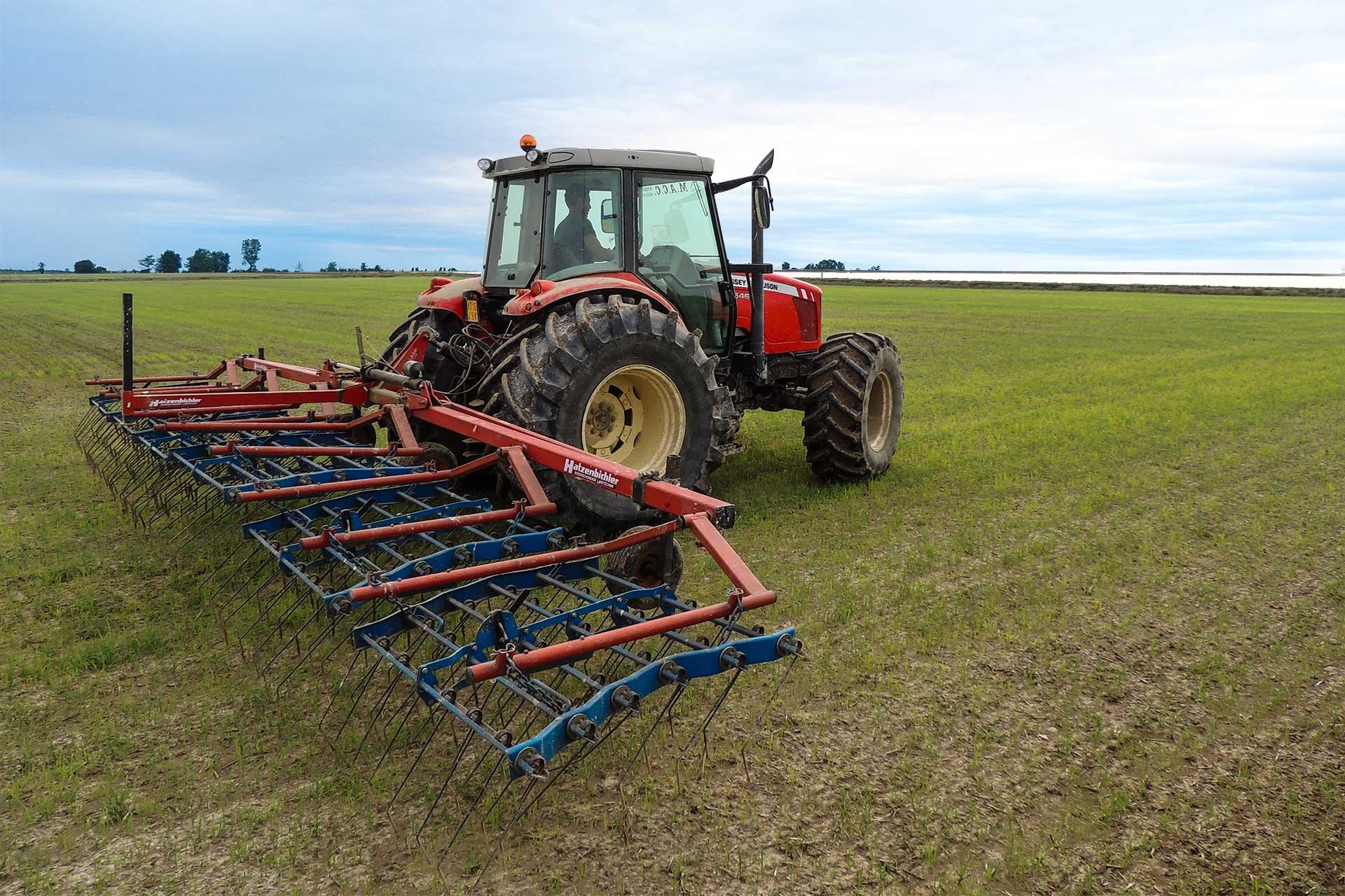 agricola-lodigiana-nel-cuore-del-riso-azienda-agricola-riseria-ronsecco-vercelli-3